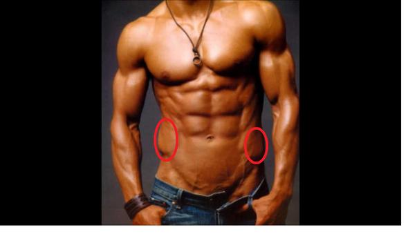 Siehe rote Kreise - (Fitness, Muskeln, Krafttraining)