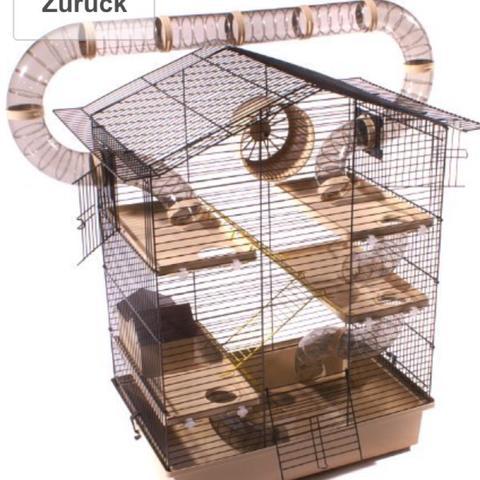 Hamsterkäfig  - (kaufen, Hamster)