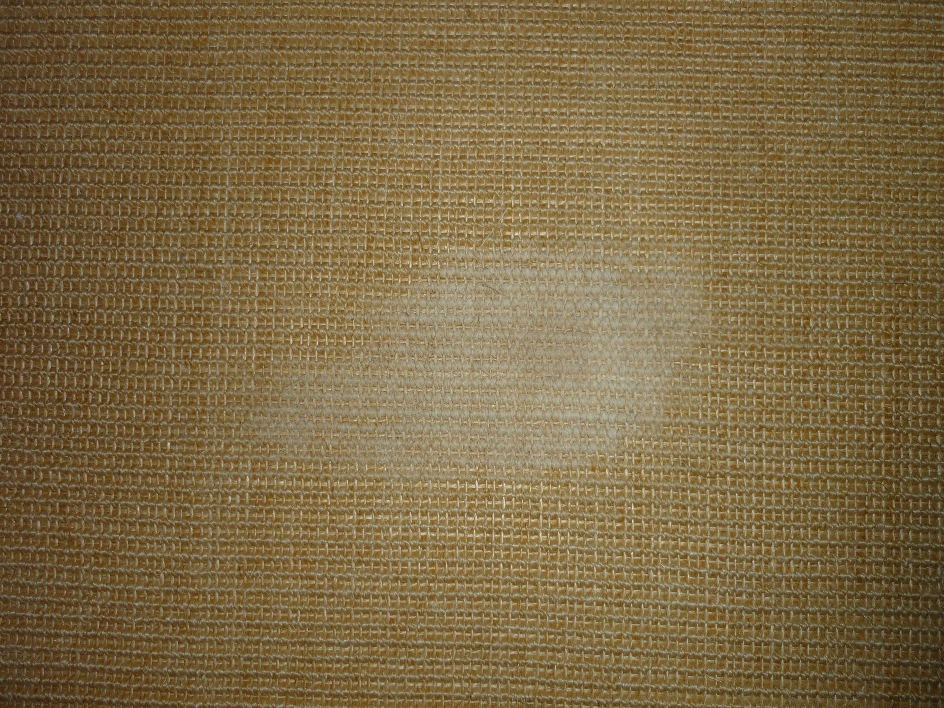 wie kann ich den fleck aus dem sisalteppich entfernen katzen hygiene reinigung. Black Bedroom Furniture Sets. Home Design Ideas