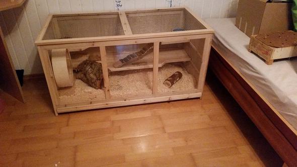wie kann ich den hamsterk fig einrichten hamster. Black Bedroom Furniture Sets. Home Design Ideas