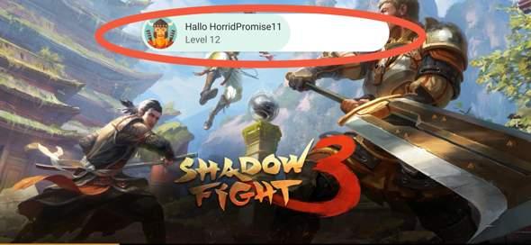 Wie kann ich die Daten von Shadow Fight 3 löschen?