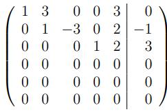 Wie kann ich die Pivot-Elemente einer Matrix in Zeilenstufenform ablesen?