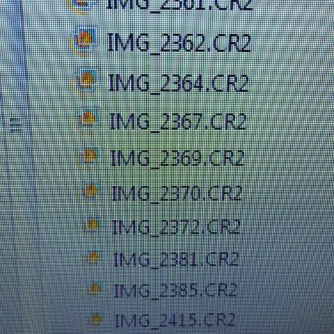 Hier sieht man gerade wie die Datei aus sieht CR2 - (Bilder, bearbeiten, umwandeln)