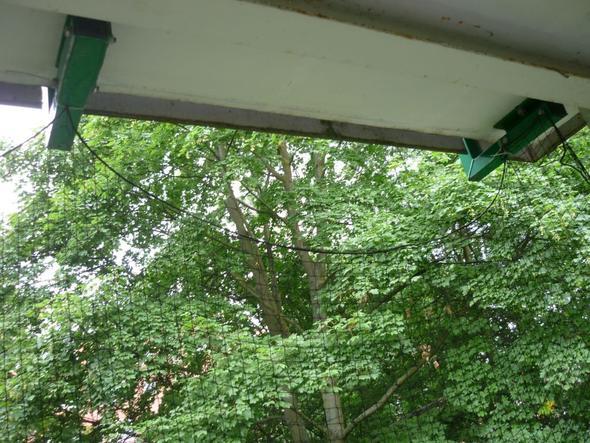 wie kann ich meinen balkon richtig katzensicher gestalten katzen katzennetz teleskopstangen. Black Bedroom Furniture Sets. Home Design Ideas