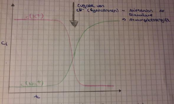 Wie kann man dieses Diagramm genauer deuten,sodass alle ...