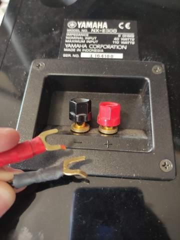 Wie kann meinen Beamer mit Lautsprechern verbinden?