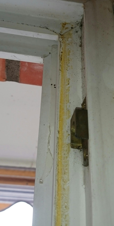 Wie kann man klebereste am fensterrahmen entfernen fenster putzen glas - Klebereste fensterrahmen entfernen ...