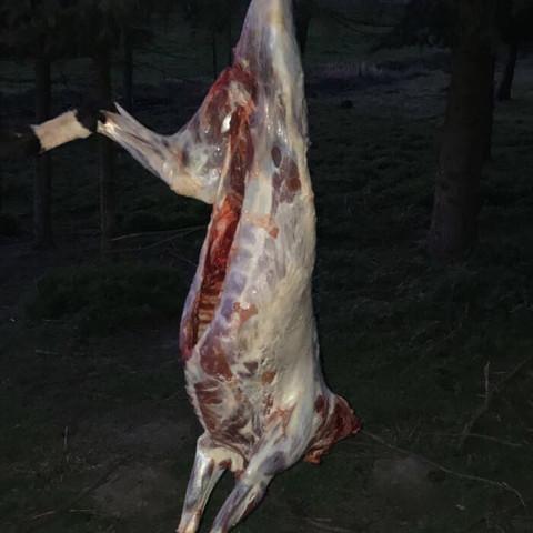 wie lange braucht dieses lamm auf dem grill, ca 60-80 höhe zur glut?