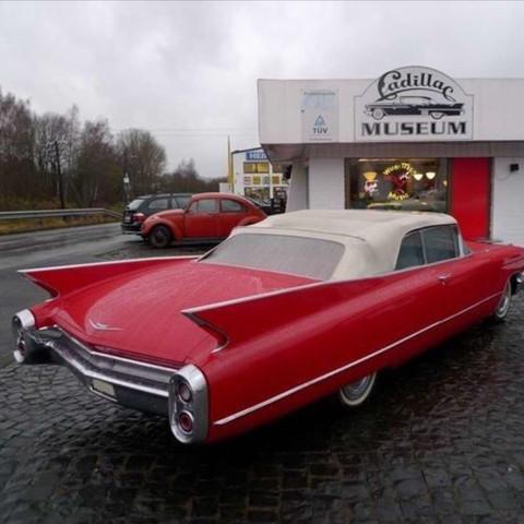 Bild 1 - (Auto, Oldtimer, Cadillac)