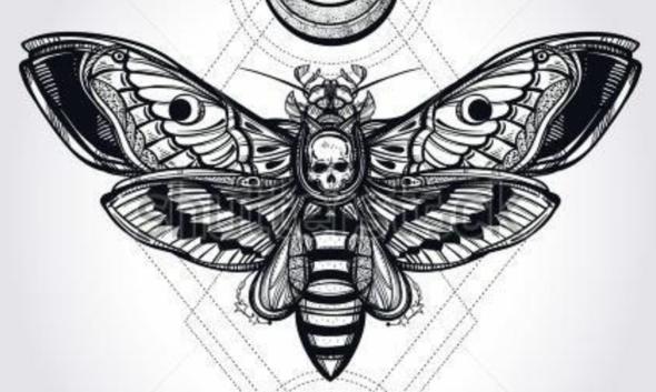 Das Motiv/die Motte  - (Tattoo, Erfahrungen, Dauer)