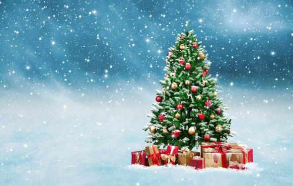 Wie lange lässt  man den Christbaum stehen, zur Weihnachtszeit?