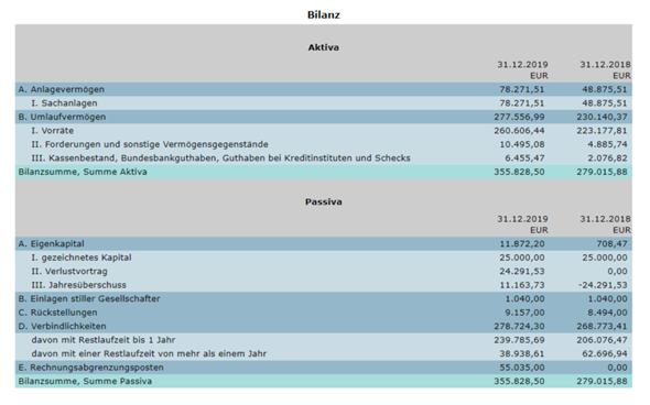 Wie lese bzw. interpretiere ich Finanzberichte einer GmbH?