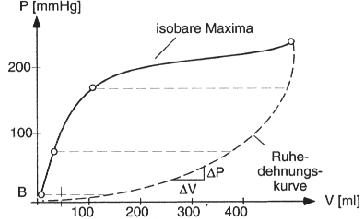 isobare Maxima - (Medizin, Herz, Druck)