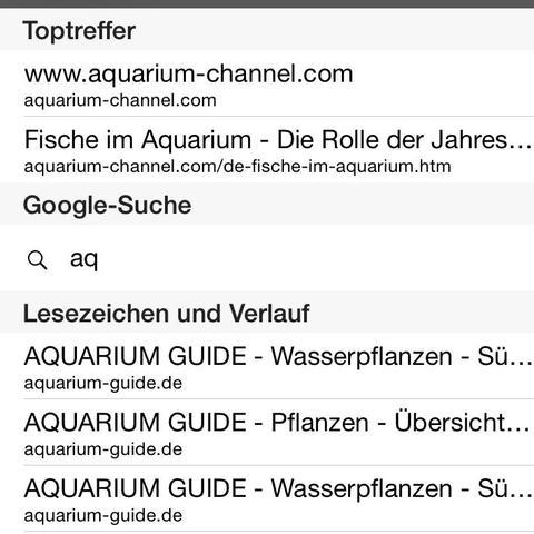 Ich möchte keinerlei Hinweise mehr in der Suchmaske... - (iPhone, Einstellungen, Safari)