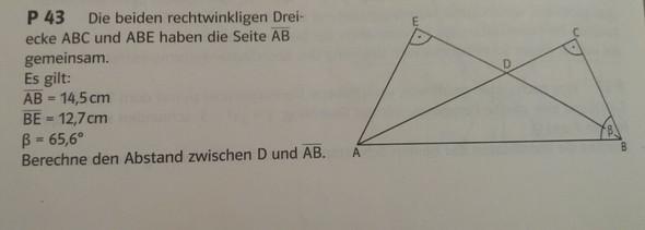 Hier die Aufgabenstellung - (Schule, Mathematik, Test)
