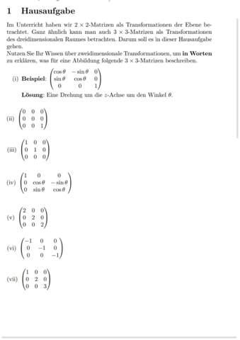 Wie löst man diese Matrixaugabe?
