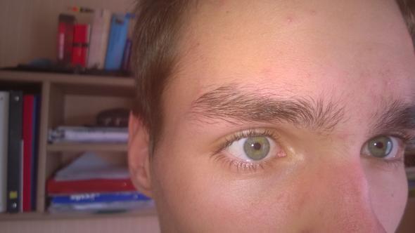 rechts - (Männer, Augenbrauen)