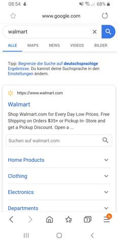 """Wie nennt man die """"Website-Vorschau"""" bei einer Suchmaschine?"""