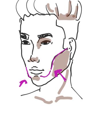 violette Linie  - (Medizin, Gesicht, Anatomie)