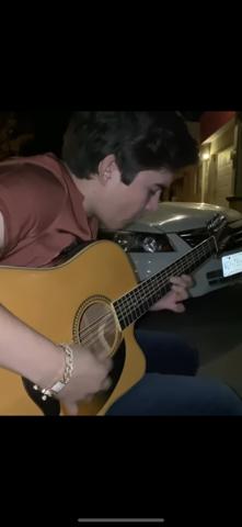 Wie nennt man diese Gitarre?