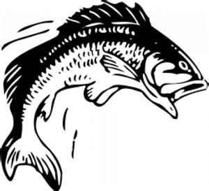 Fisch - (Kunst, zeichnen)