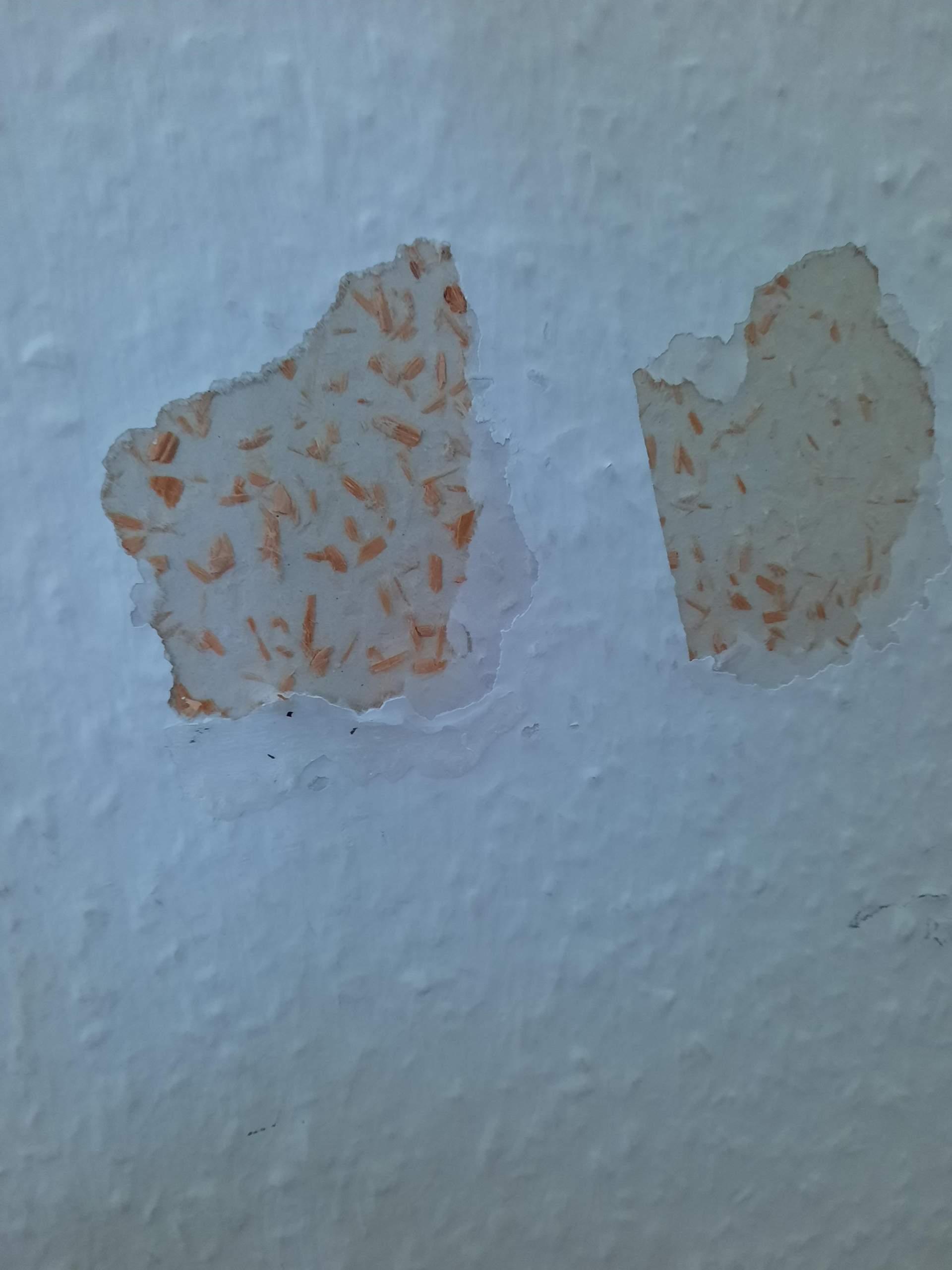wie rette ich das am besten wand flicken Wohnung, Haus, malen