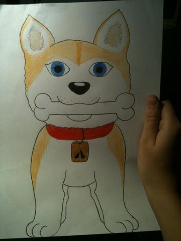 Akita Inu  - (Hund, Bilder, malen)