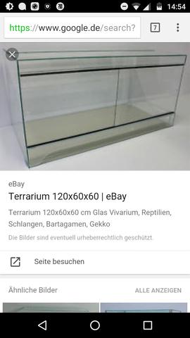 Wie schwer wird so ein Terrarium sein? - (Gewicht, Terrarium)