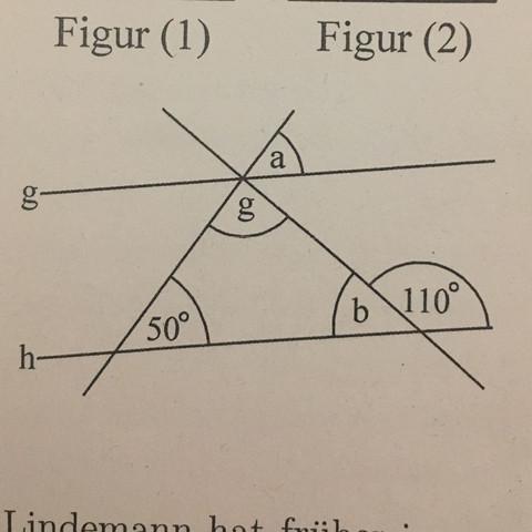 Mathematik Hilfe - (Intelligenz, Winkel, Parallel)