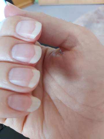 Wie soll ich meine Nägel feilen?