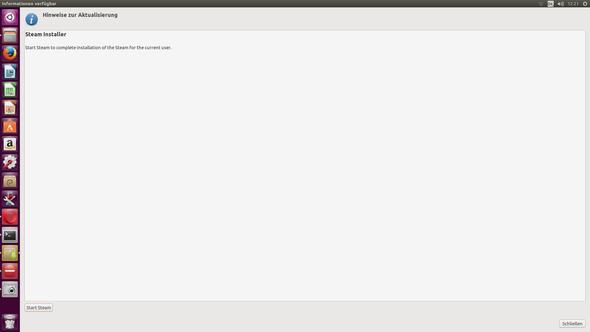 Bis zu diesem Fenster gibt und gab es keine Probleme. - (PC, Steam, Ubuntu)
