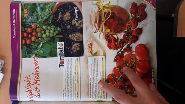 - (Pflanzen, Kartoffeln, Tomaten)