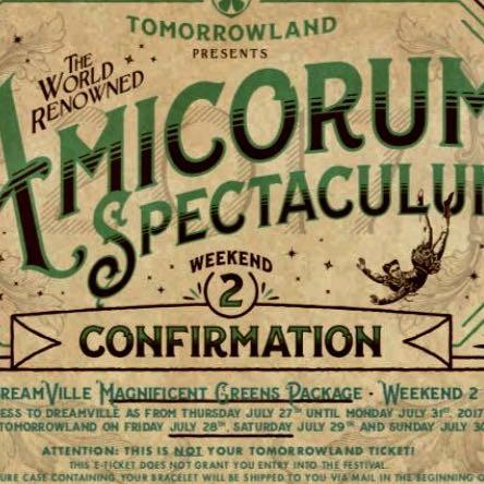 Ticket  - (verkaufen, Ticket, Tomorrowland)