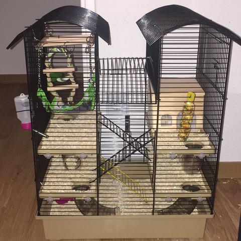 wie viel gitter abstand braucht man f r ein teddy hamster k fig. Black Bedroom Furniture Sets. Home Design Ideas