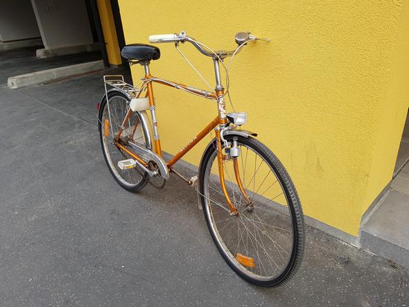 Wie viel ist das Fahrrad (ALPINA) wert?