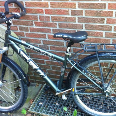 Fahrrad - (Fahrrad, Mountainbike)