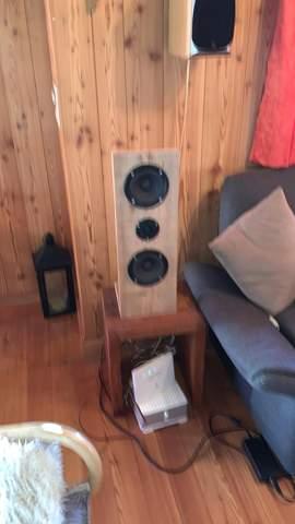 Wie viel ist so ein Lautsprecher wert?