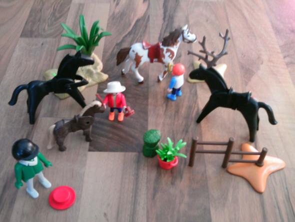 Wie viel kann ich für diese Playmobil Sets verlangen?
