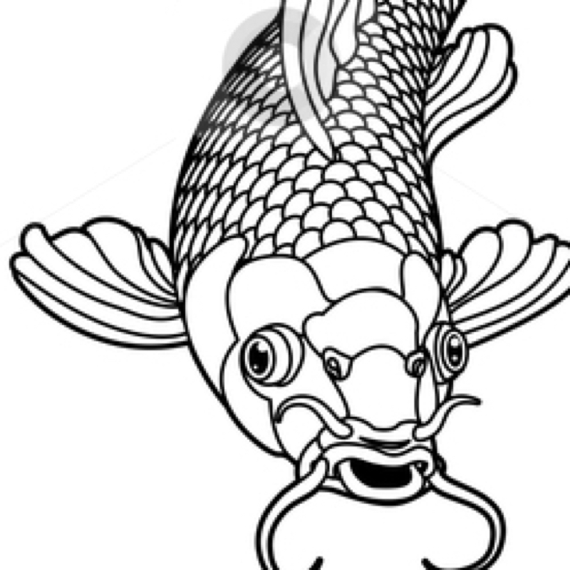 Viel Fisch dating Kosten
