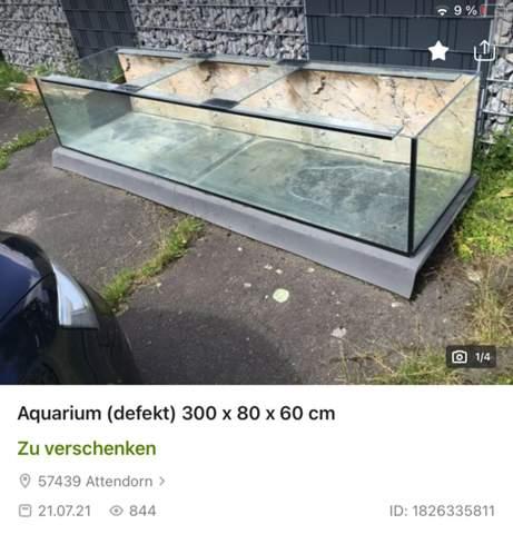 Wie viel kostet es sich solch ein Aquarium(für Hamster) liefern zu lassen?