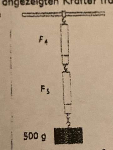Wie viel Newton haben die folgenden Federkraftmesser?