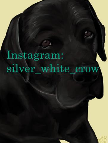 Hund 1 - (Tiere, Hund, Kunst)