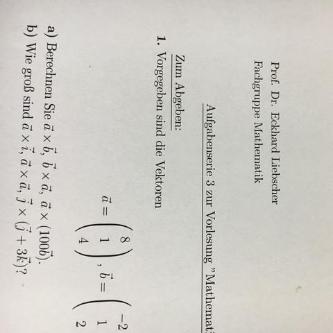 Aufgaben im Anhang - (Mathe, vektoren)