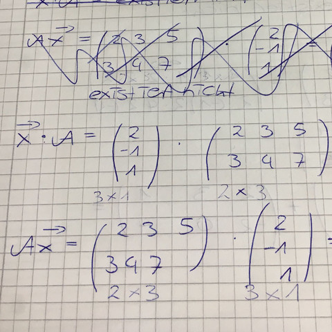Aufgabe mit Ax - (Mathematik, Matrix, matrizen)