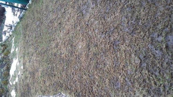 Wie wird unser Rasen wieder schön?