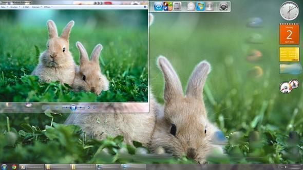 Mein Desktop und das Bild geöffnet daneben. - (Bilder, Windows 7, Bildschirm)