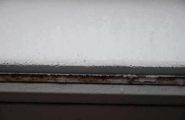 Wir haben starke feuchtigkeit an den fensterscheiben der for Fenster undicht