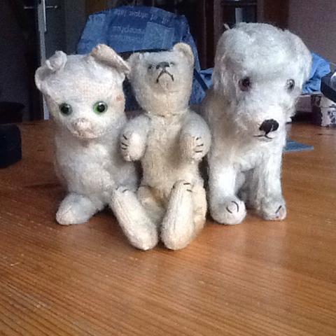 Links Katze Mitte Bär rechts Hund  - (Versteigerung)