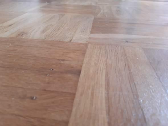 Wird ein Hund unseren Fußboden kaputt machen?