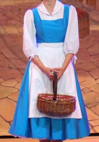 wo bekomme ich das blaue kelid von belle aus die schöne und das ...